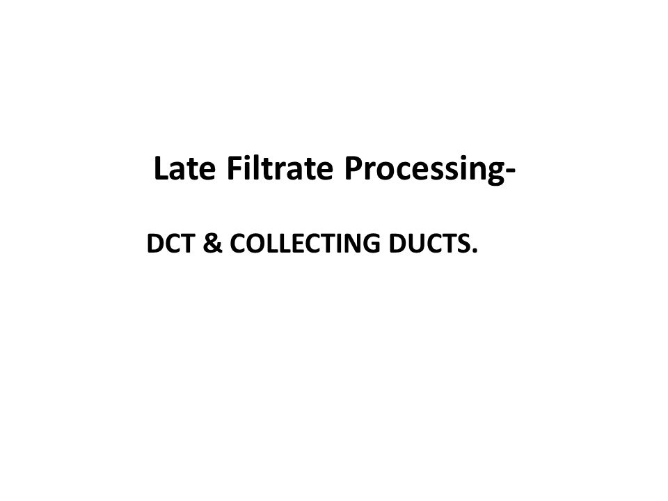 Late Filtrate Processing-