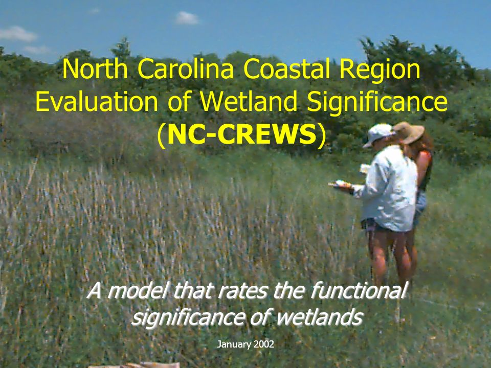 A model that rates the functional significance of wetlands