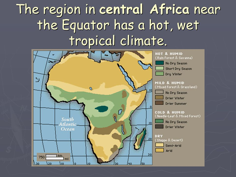 The region in central Africa near the Equator has a hot, wet tropical climate.