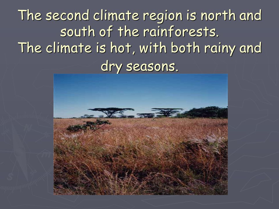 The second climate region is north and south of the rainforests