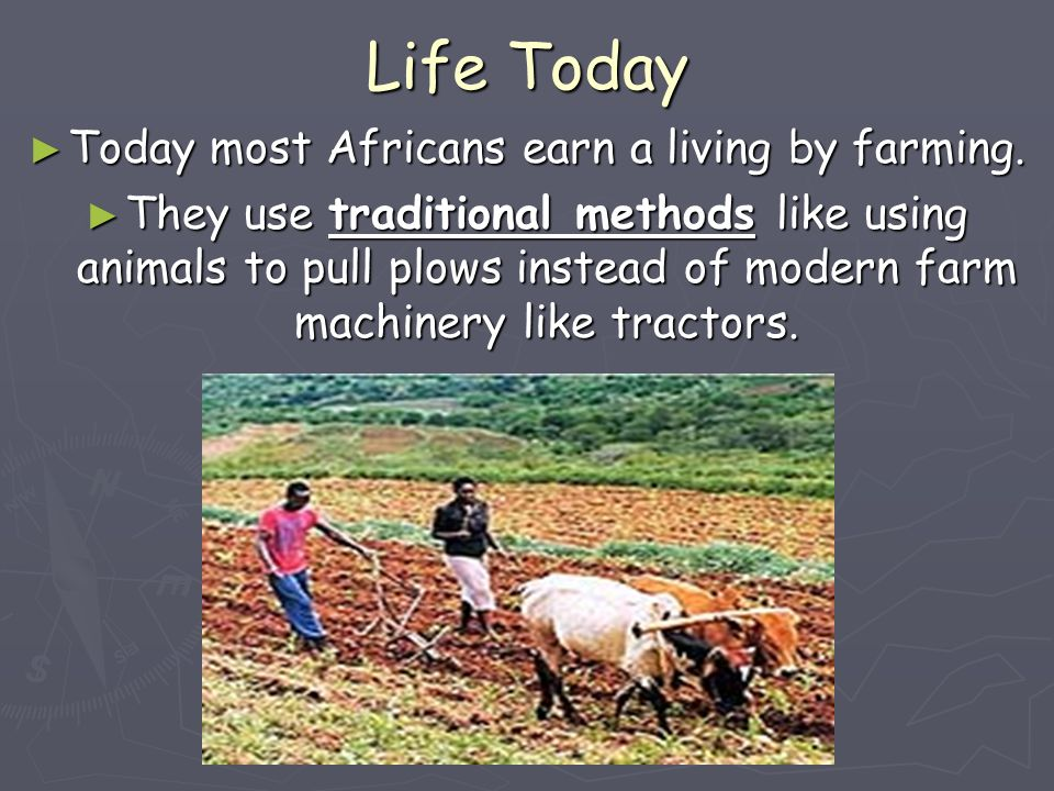 Today most Africans earn a living by farming.