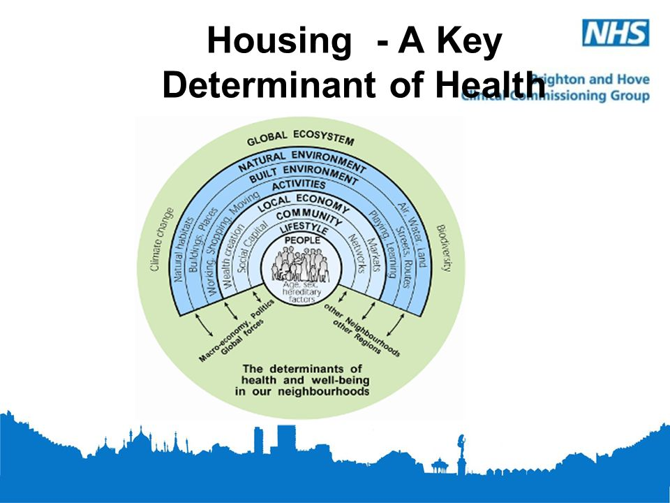 Housing And Health The Brighton And Hove Experience Ppt Video