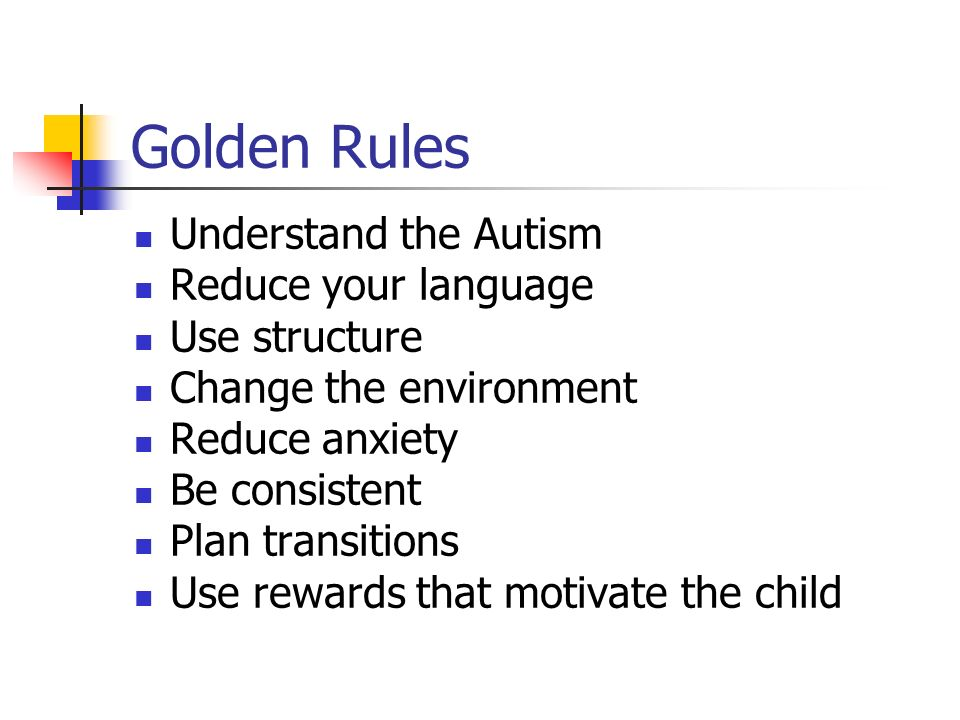 Golden Rules Understand the Autism Reduce your language Use structure