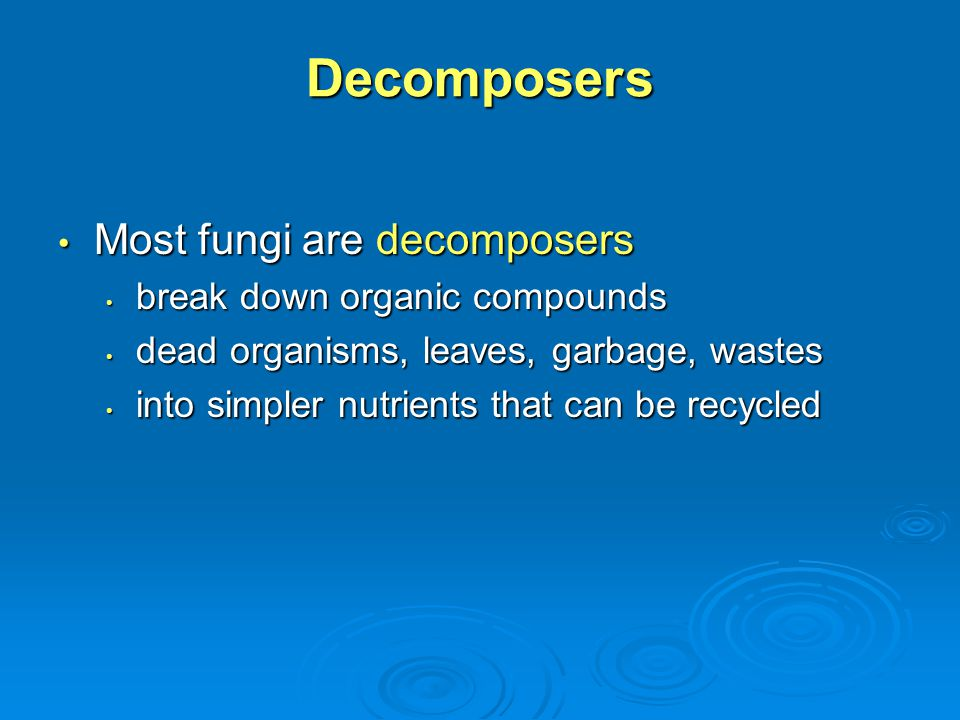Decomposers Most fungi are decomposers break down organic compounds