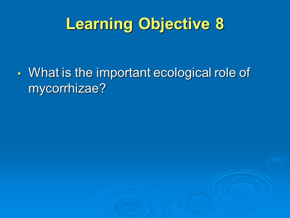 Learning Objective 8 What is the important ecological role of mycorrhizae