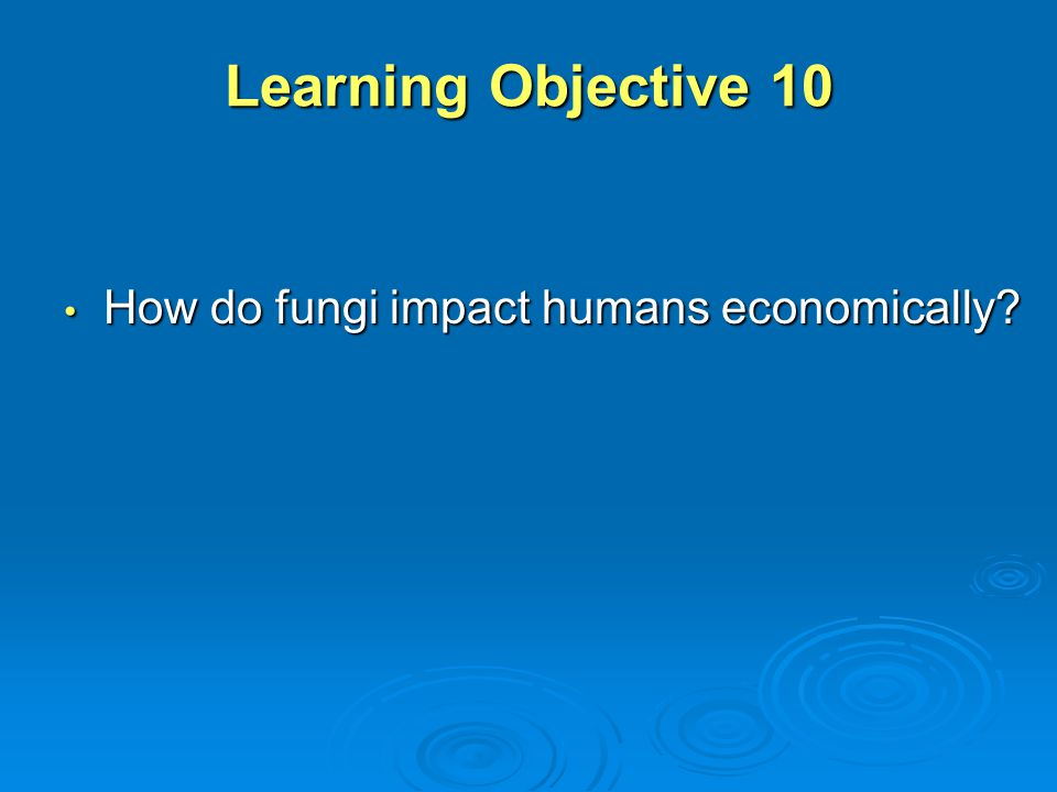 Learning Objective 10 How do fungi impact humans economically
