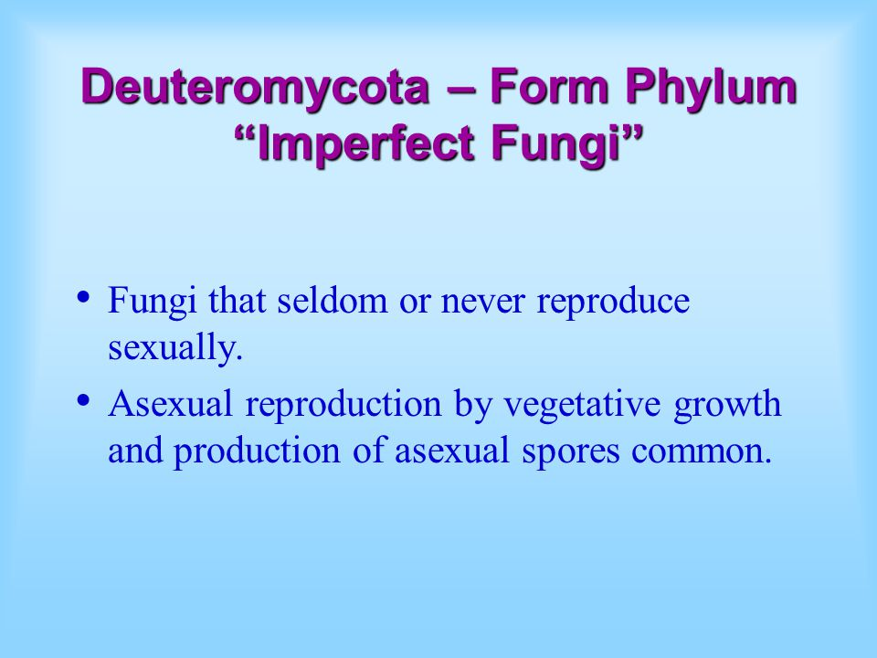Do imperfect fungi reproduce sexually