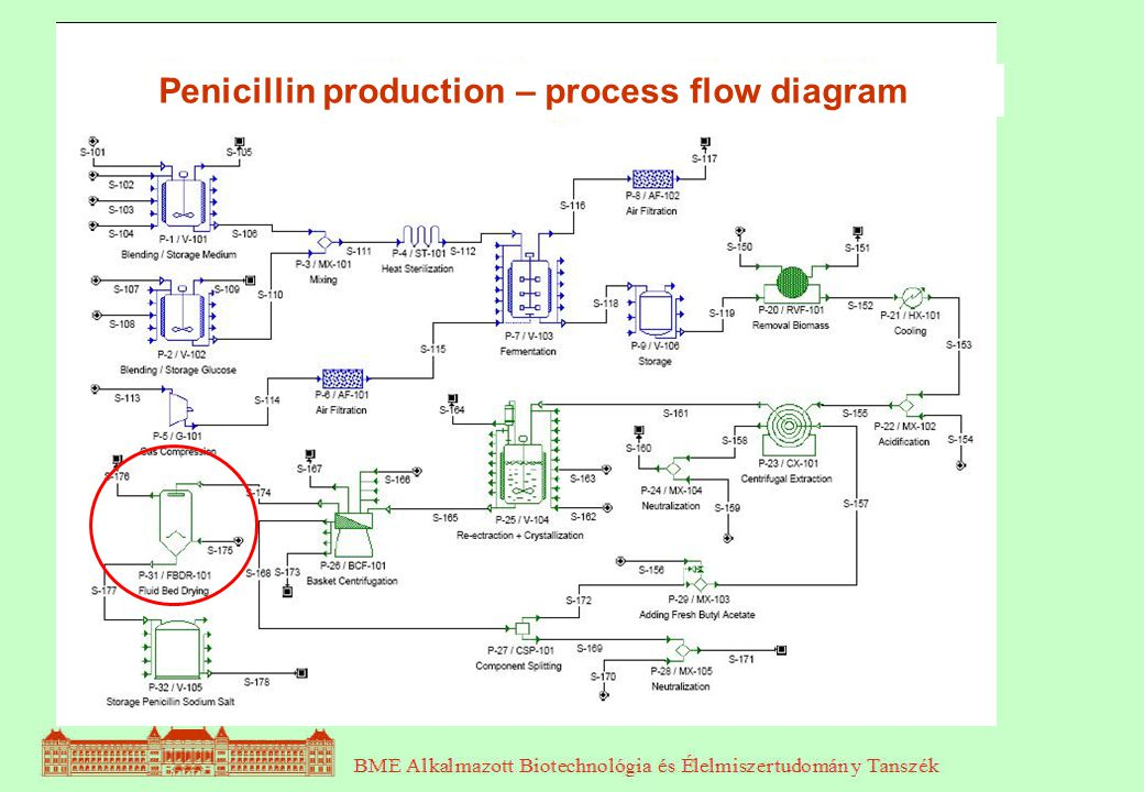biol gia s biotechnol gia 6 r sz ppt video online download rh slideplayer com Document Process Flow Diagram Engineering Process Flow Diagram