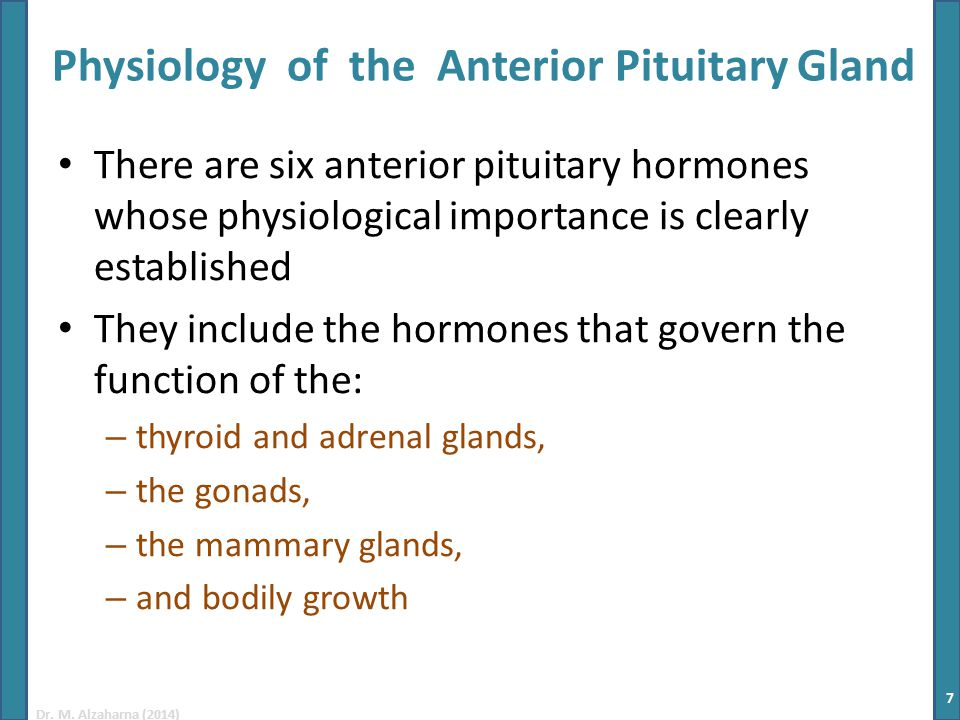 Hormones secreted by pituitary gland and their functions.