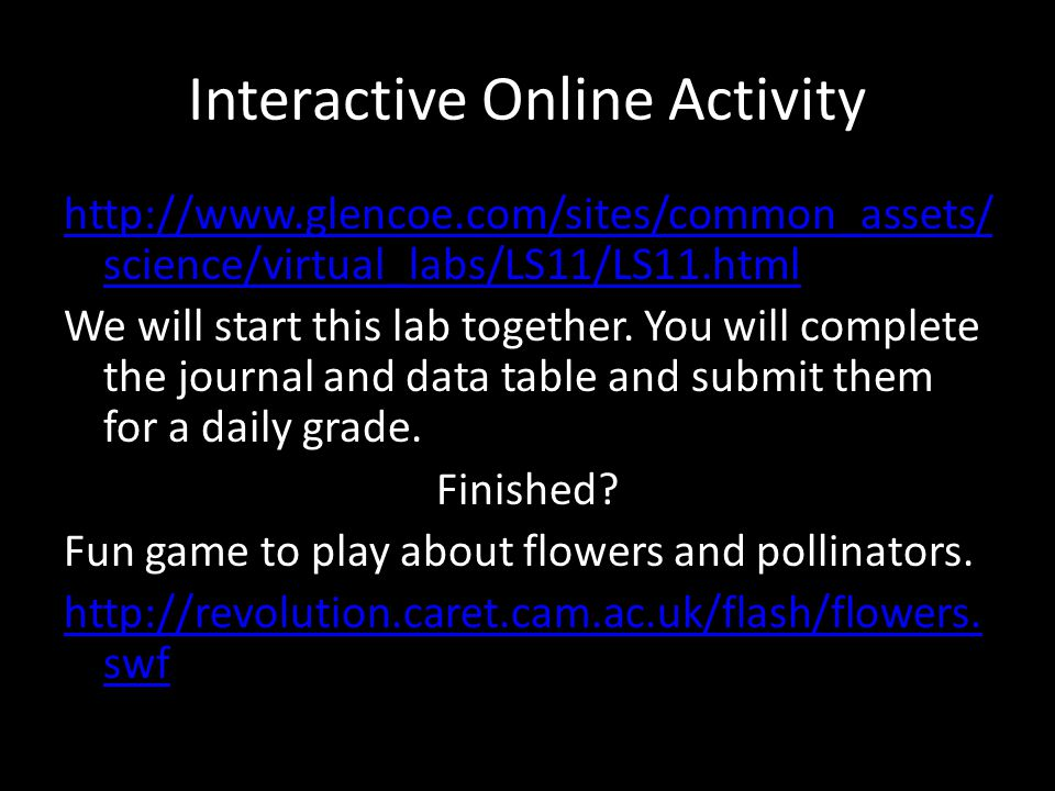 Interactive Online Activity