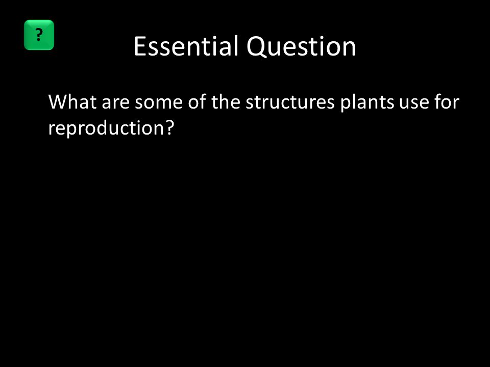 Essential Question What are some of the structures plants use for reproduction