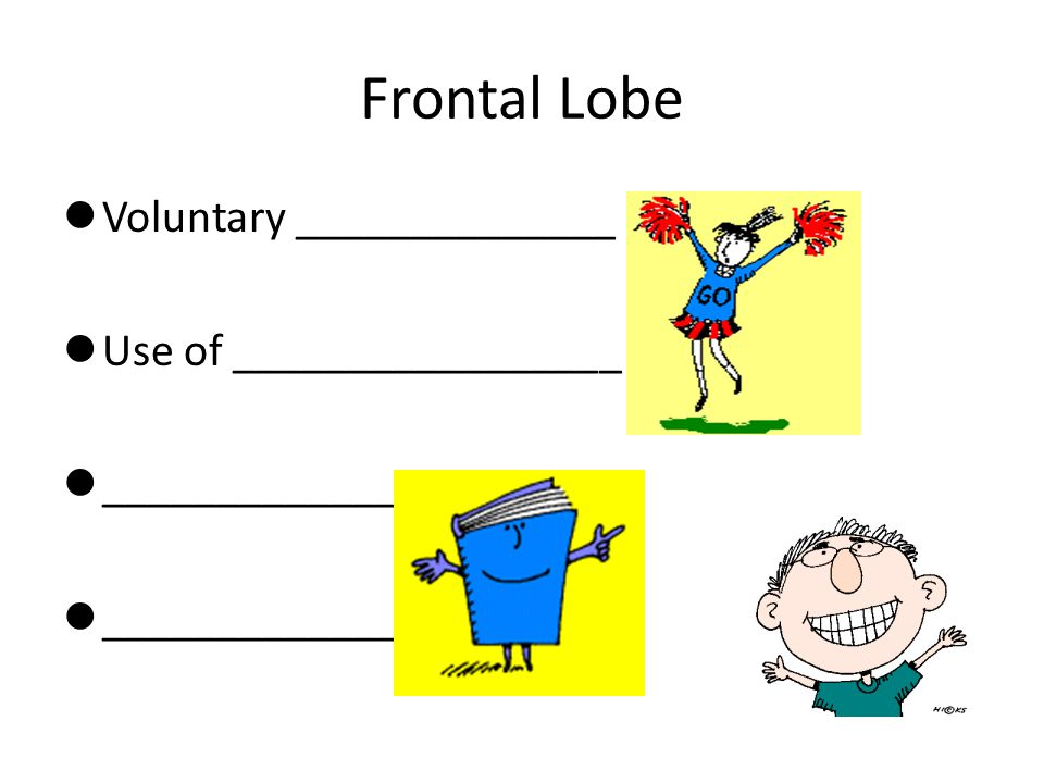 Frontal Lobe Voluntary ______________ Use of _________________