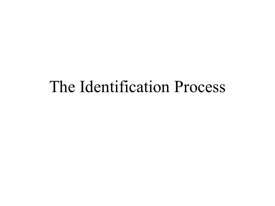The Identification Process