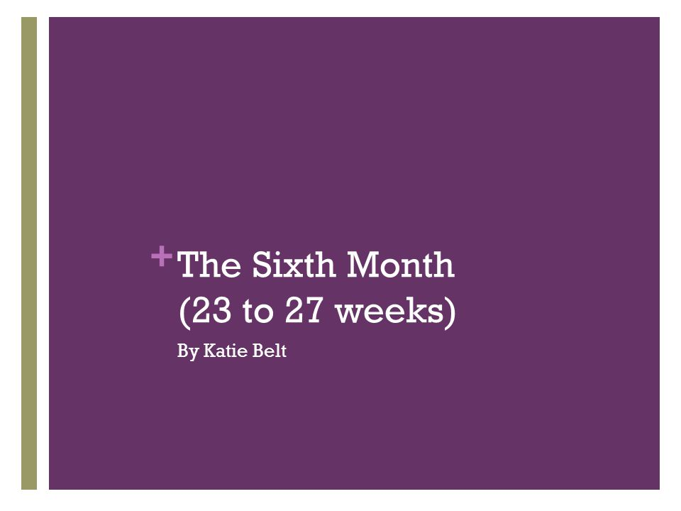 The Sixth Month (23 to 27 weeks)