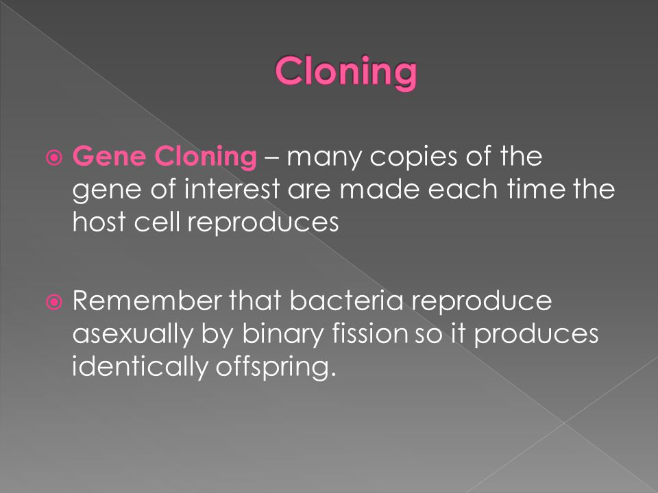Cloning Gene Cloning – many copies of the gene of interest are made each time the host cell reproduces.
