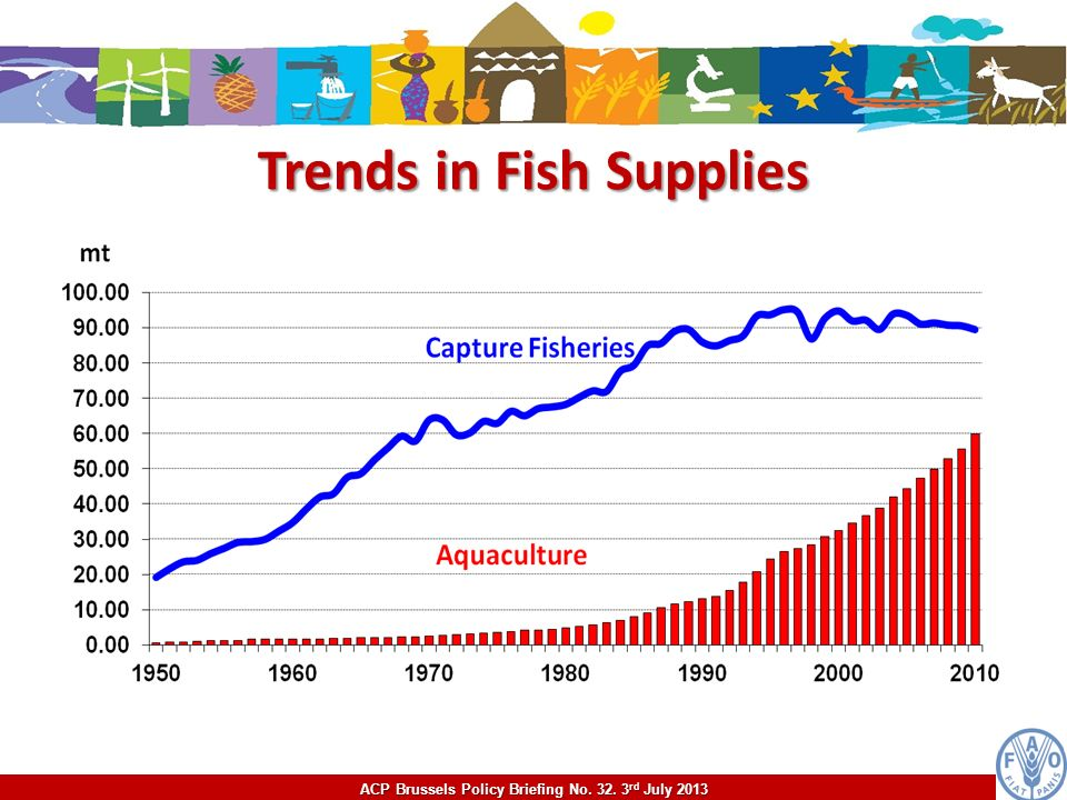 Trends in Fish Supplies