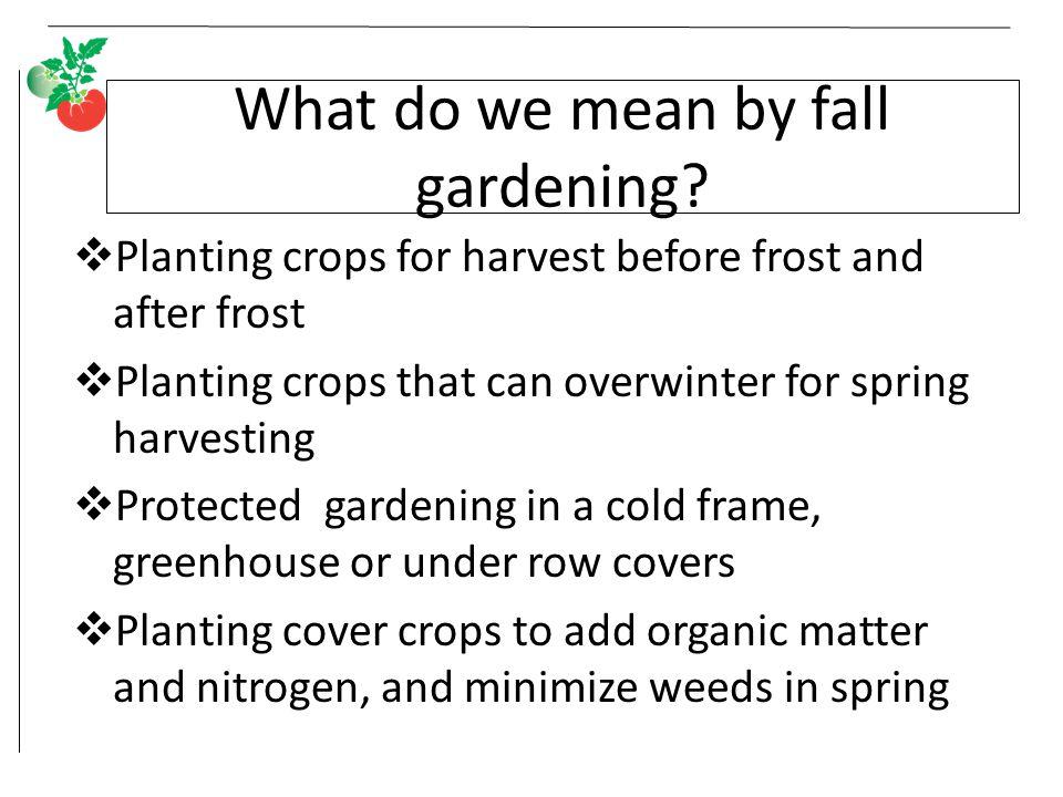 Fall Vegetable Gardening - ppt video online download