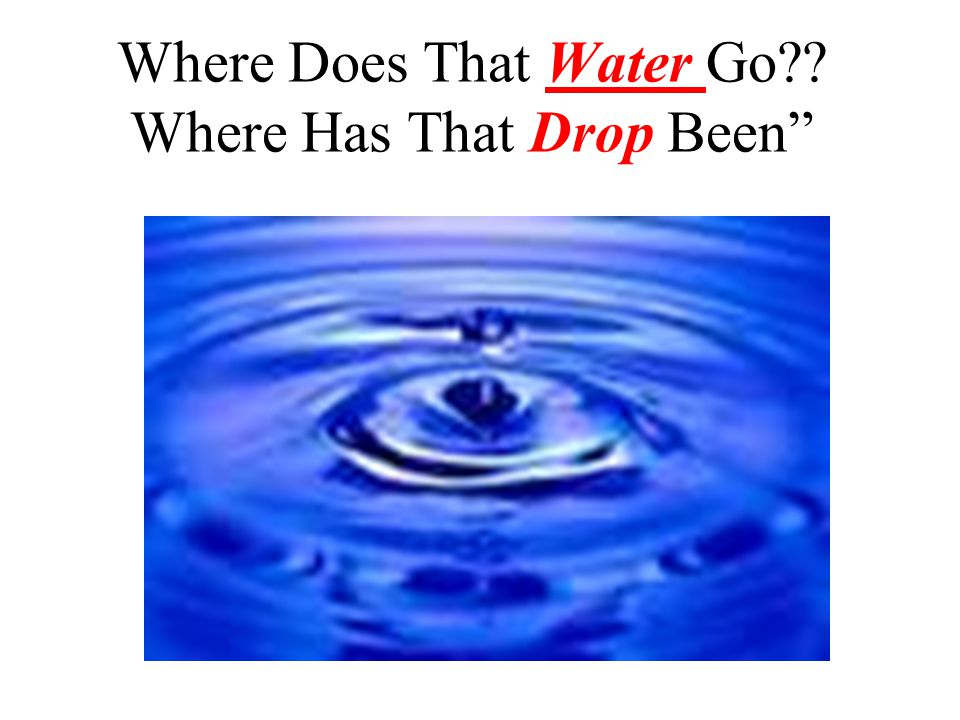 Where Does That Water Go Where Has That Drop Been