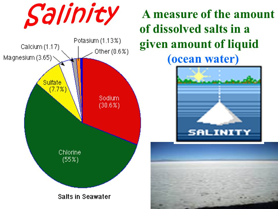 Salinity A measure of the amount of dissolved salts in a given amount of liquid (ocean water)