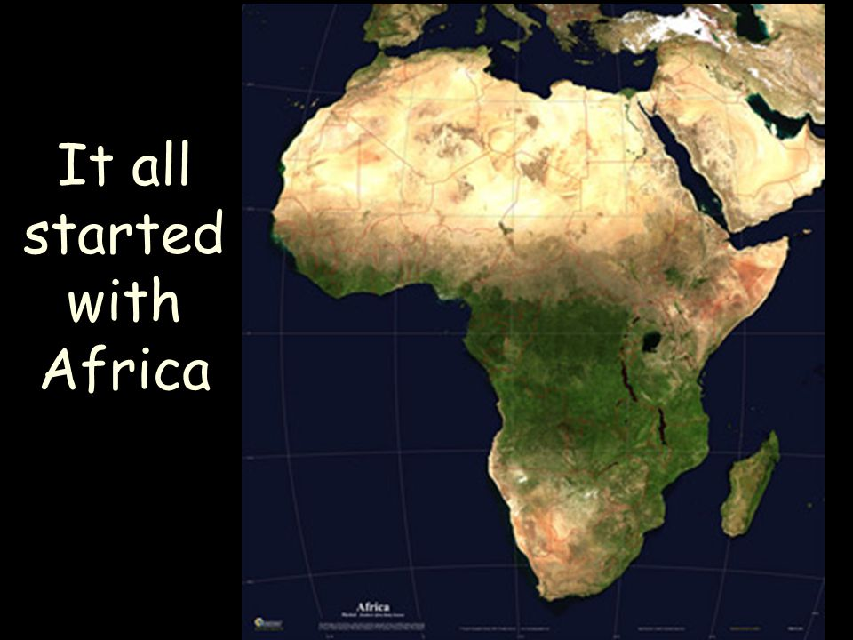 It all started with Africa