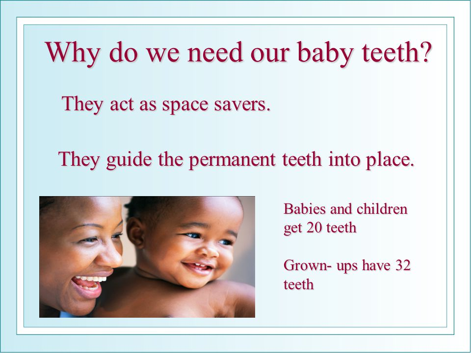 Why do we need our baby teeth