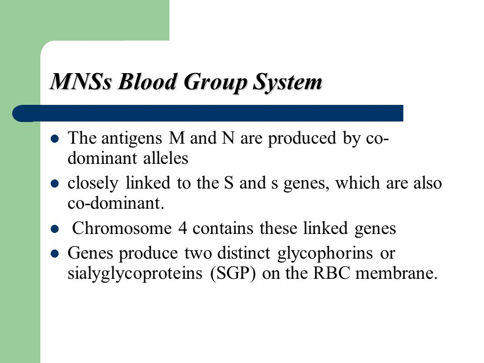 MNSs Blood Group System