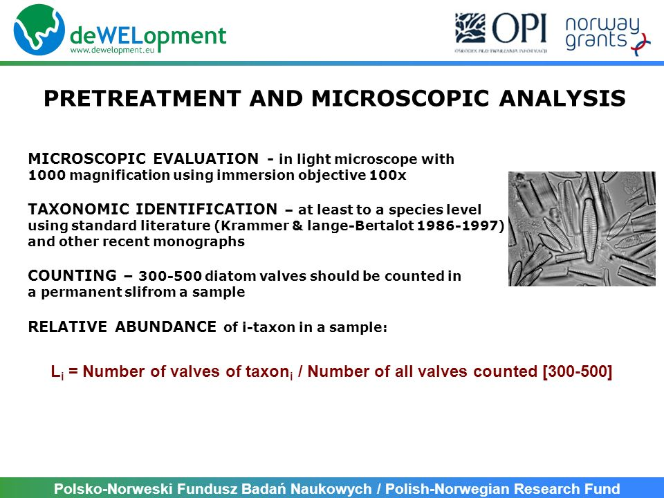 PRETREATMENT AND MICROSCOPIC ANALYSIS