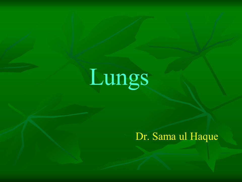 Lungs Dr. Sama ul Haque
