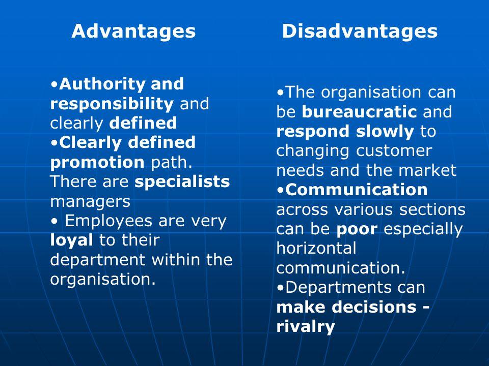 horizontal communication advantages and disadvantages