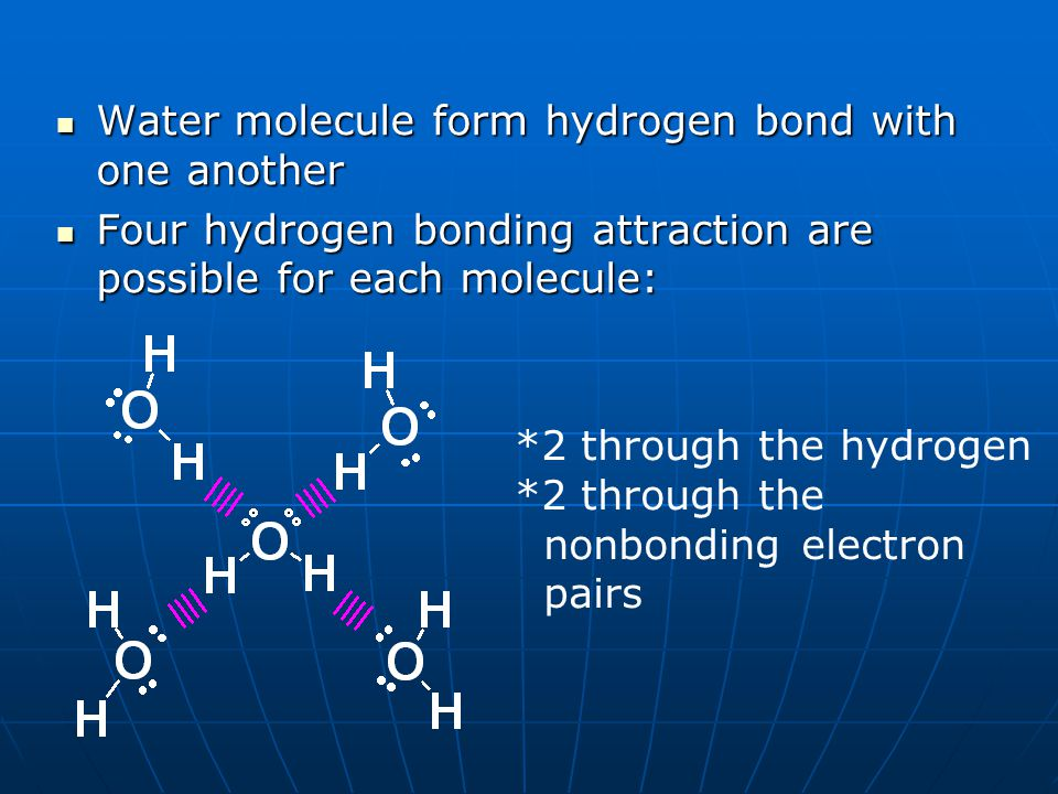 Water molecule form hydrogen bond with one another