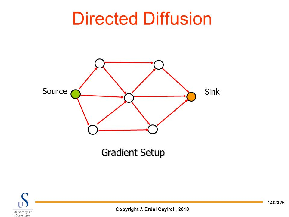 Directed Diffusion Gradient Setup Source Sink