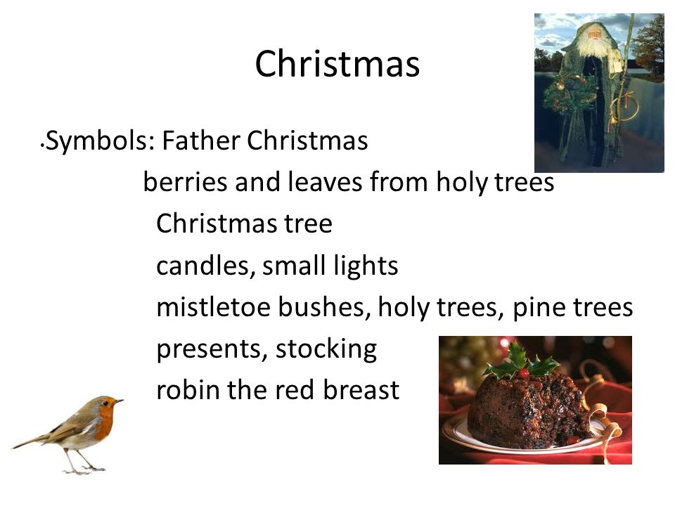 Christmas Symbols: Father Christmas berries and leaves from holy trees
