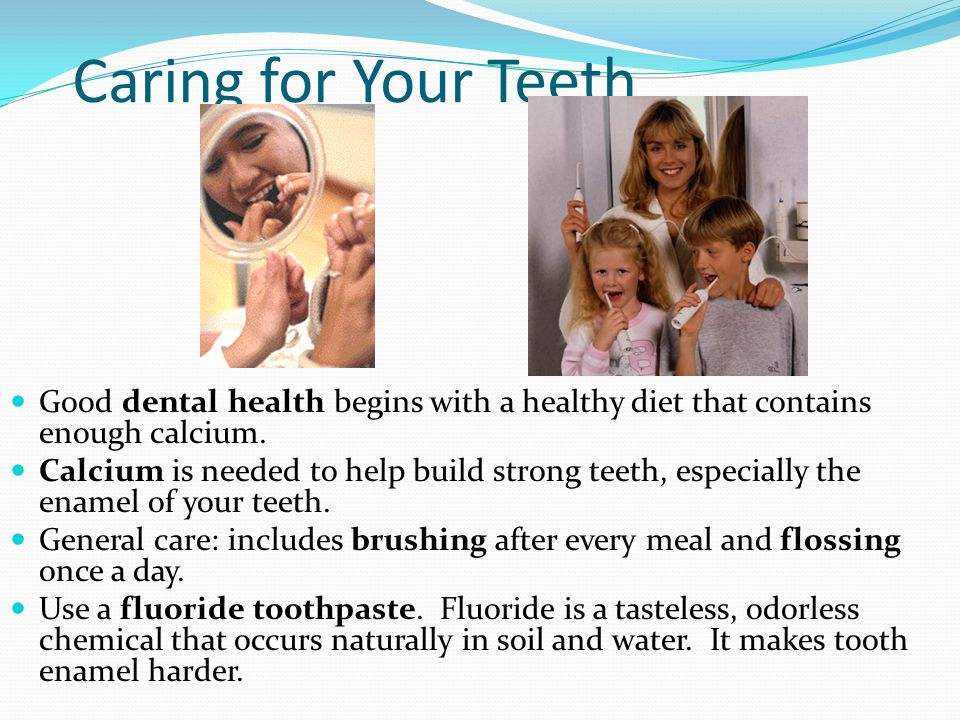 Caring for Your Teeth Good dental health begins with a healthy diet that contains enough calcium.