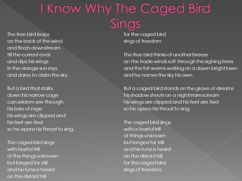 black boy and i know why the caged bird sings comparative analysis essay Essay on i know why the caged bird sings - storm the battlefronts - i know why the caged bird sings - storm the battlefronts i know why the caged bird sings maya angelou's novel is a classic tale of growing up black in the american south in the 1930s and 40s.