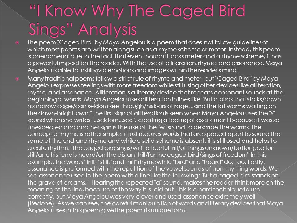 i know why the caged bird sings essay introduction Lee 1 nadia lee english 2 mr list 19 january 2013 i know why the caged bird sings by: maya angelou 1 before i chose this poem, i was thinking about choosing a couple of other ones when i finally realized that this poem caught my eye the most we will write a custom essay sample on i know.