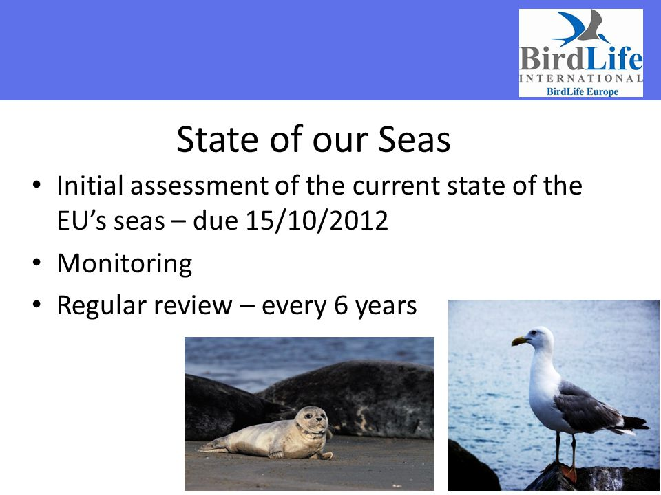 State of our Seas Initial assessment of the current state of the EU's seas – due 15/10/2012. Monitoring.