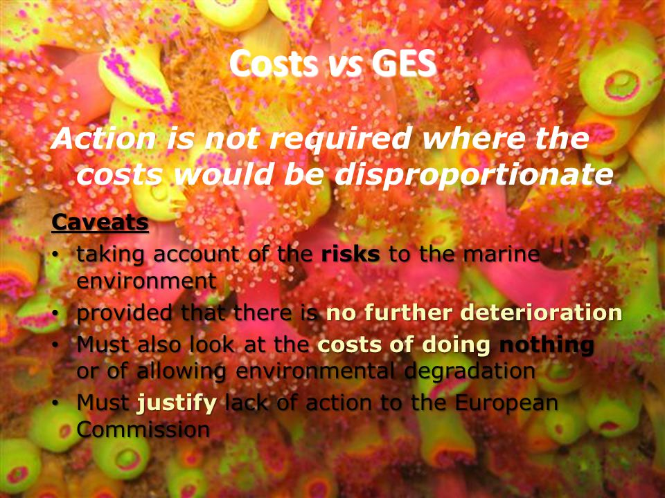 Costs vs GES Action is not required where the costs would be disproportionate. Caveats. taking account of the risks to the marine environment.