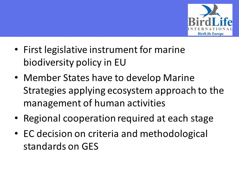 First legislative instrument for marine biodiversity policy in EU