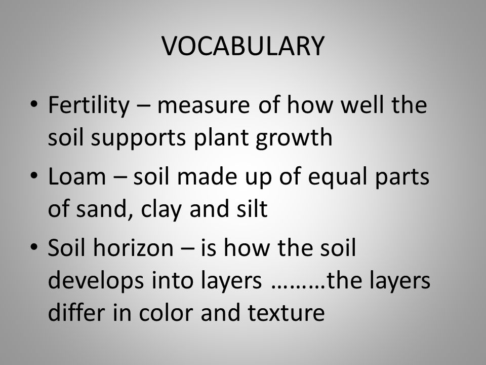 VOCABULARY Fertility – measure of how well the soil supports plant growth. Loam – soil made up of equal parts of sand, clay and silt.