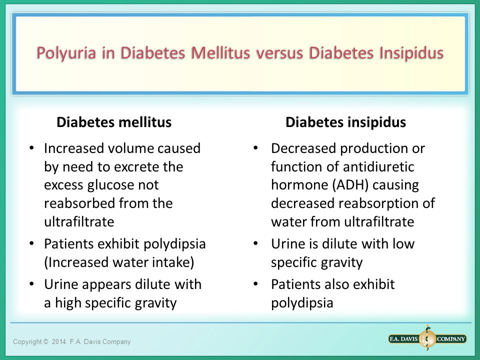 INTRODUCTION TO URINALYSIS - ppt video online download