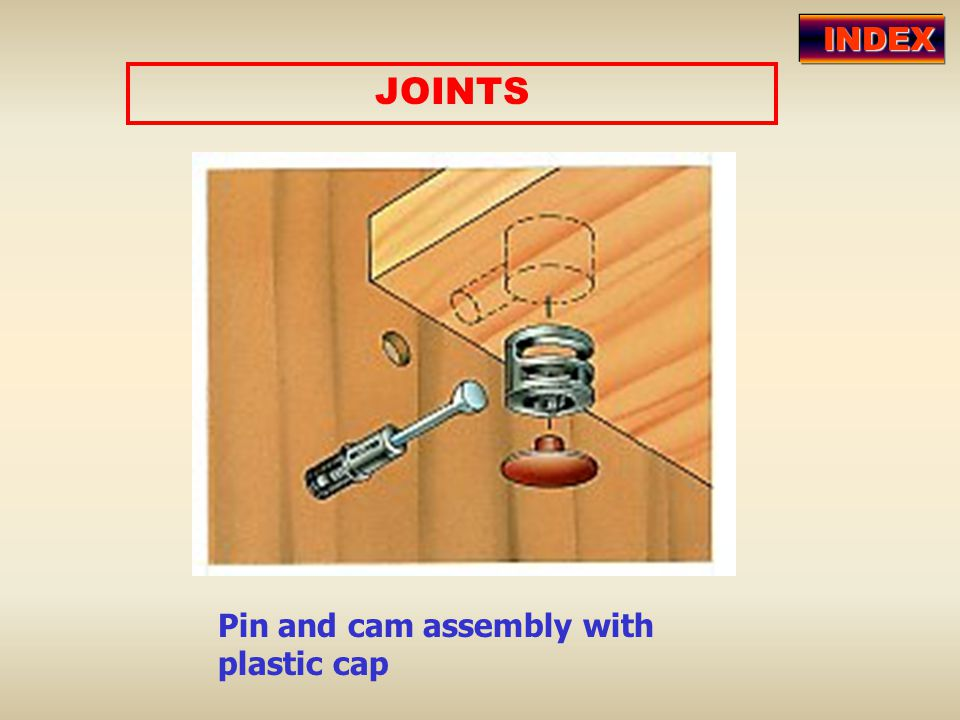 INDEX JOINTS Pin and cam assembly with plastic cap