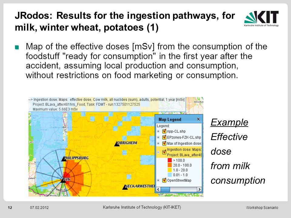JRodos: Results for the ingestion pathways, for milk, winter wheat, potatoes (1)