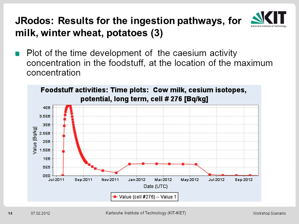 JRodos: Results for the ingestion pathways, for milk, winter wheat, potatoes (3)