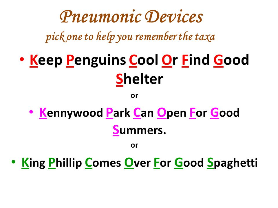 Pneumonic Devices pick one to help you remember the taxa