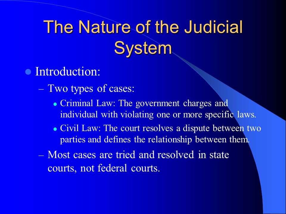 The Nature of the Judicial System