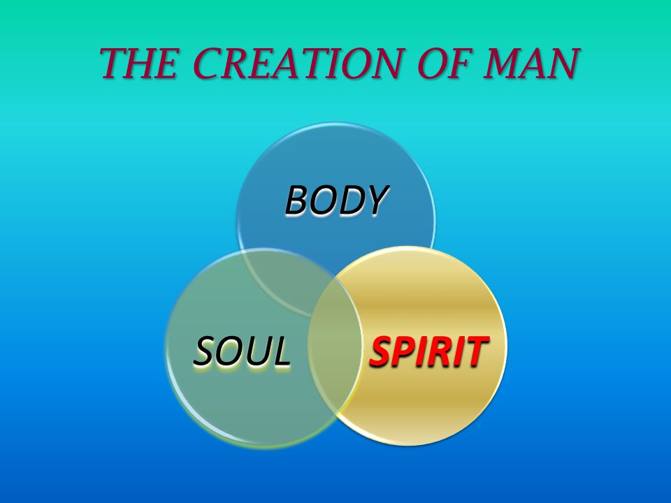 THE CREATION OF MAN BODY SPIRIT SOUL