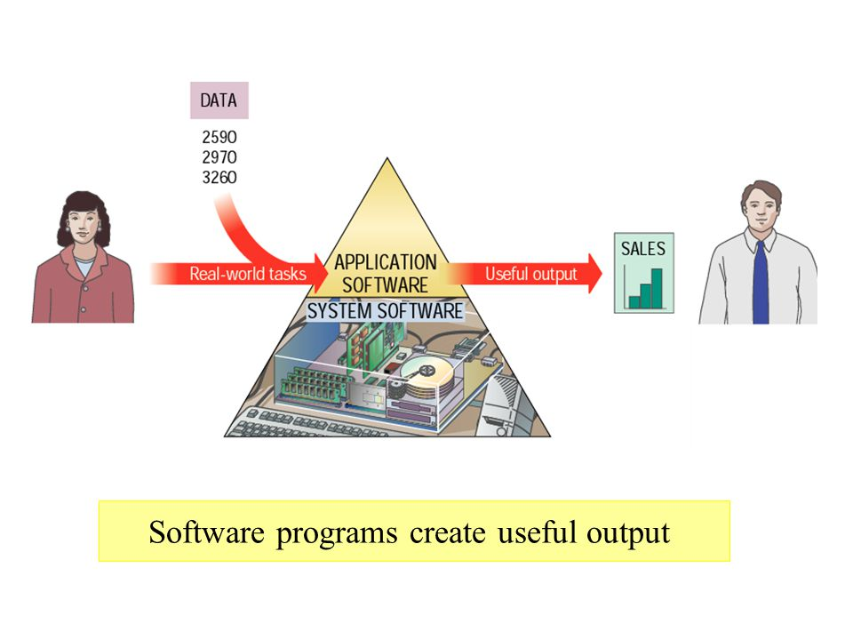 Software programs create useful output