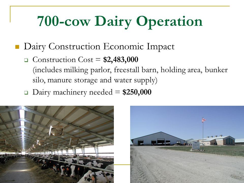 700-cow Dairy Operation Dairy Construction Economic Impact