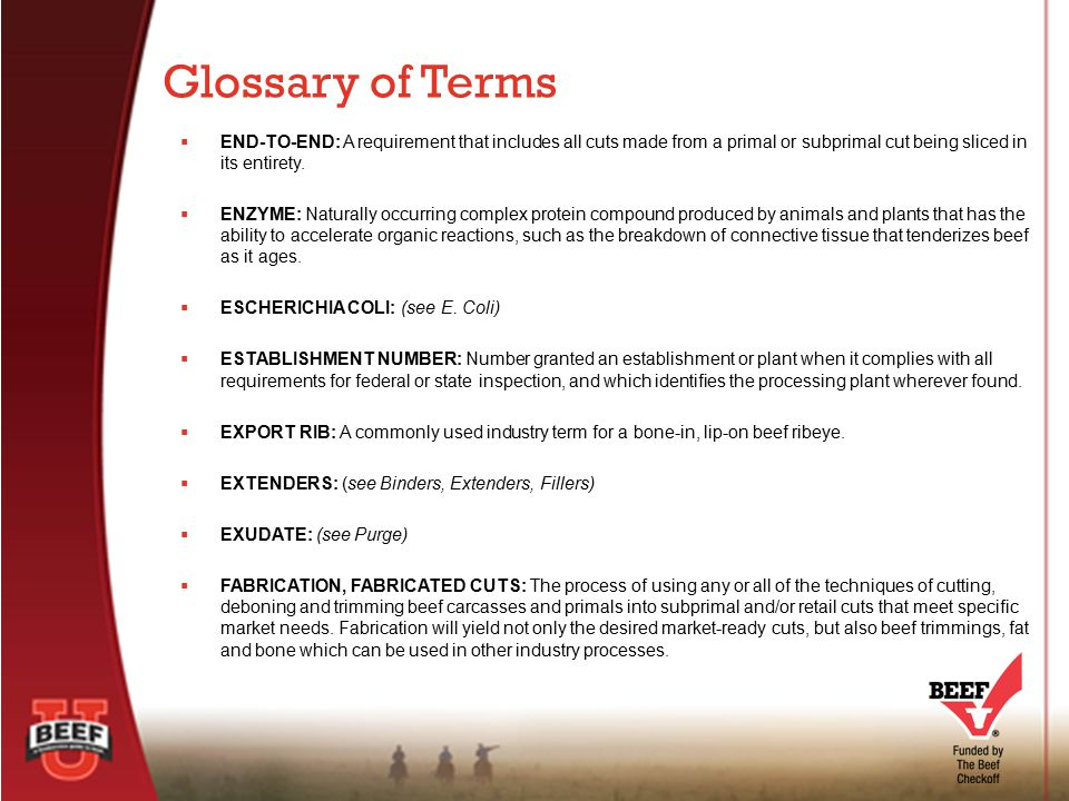 Glossary  - ppt download