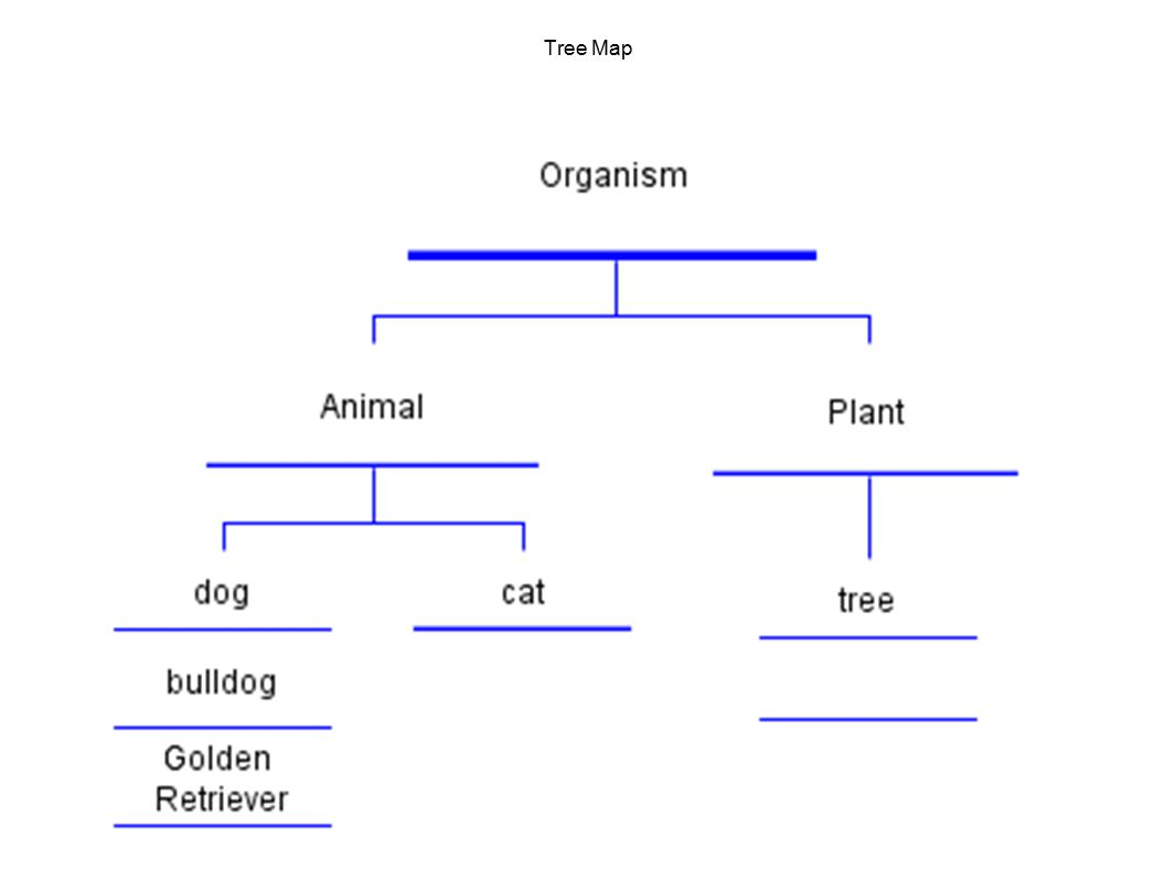 Chapter 4 Cell Structure And Function Ppt Download Plants Cells Diagram 48 Tree Map